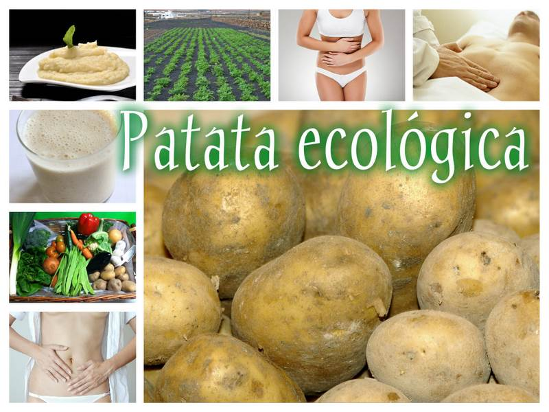 Collage_patata_ecologica (Copiar)