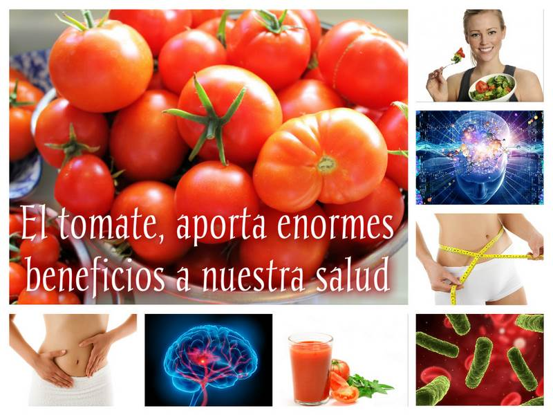 Collage_Tomate_red